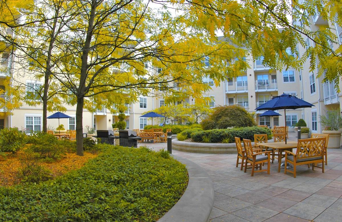 Stamford Apartments Images Elizahittmancom Ideas For